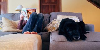How Living With A Dog Can Bring Positive Change In Your Life